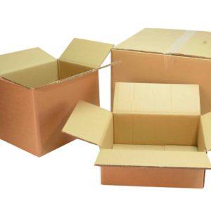 Thùng giấy carton vận chuyển cây xanh